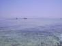 Efren Zanzibar 2006
